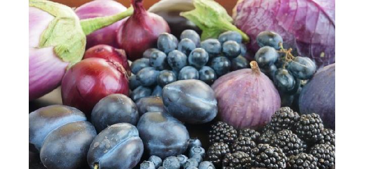 anthocyanins antioxidants